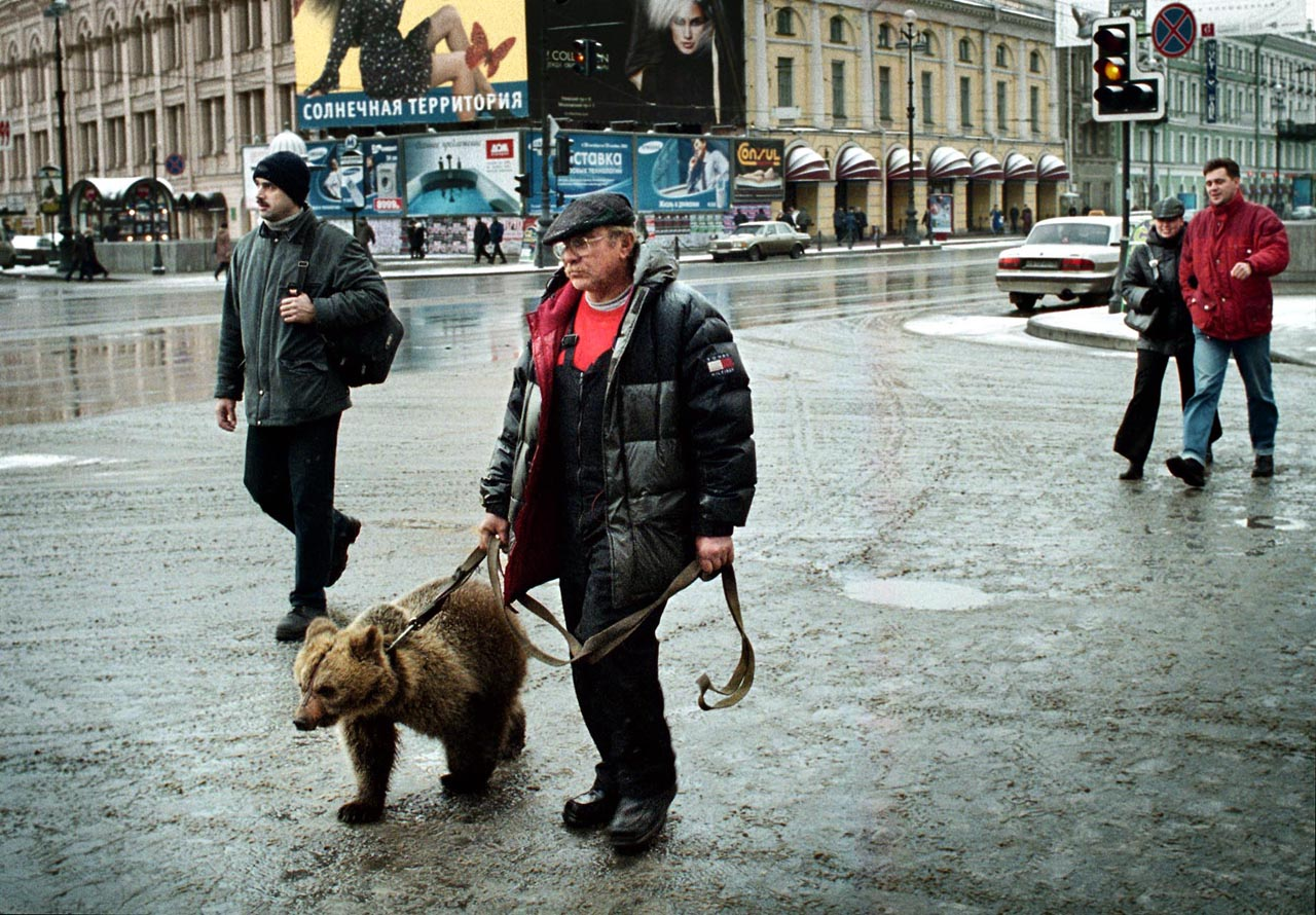 02.11.04.BEAR AT NEVSKY PROSPEKT. THE MAINSTREET OF SANKT PETERSBURG.